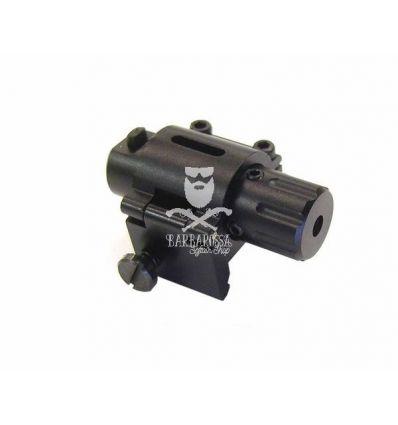 Laser 2028 per RIS