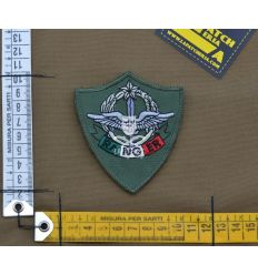 Patch 4 Rgt Alpini Ranger - OD